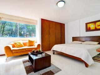0203 - Studio in the best Location! - Medellin vacation rentals