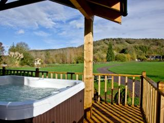 Woodpecker Lodge, Redlake Farm located in Glastonbury, Somerset - Compton Dundon vacation rentals