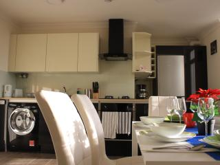 Amazing apartment in London for 6 person - London vacation rentals
