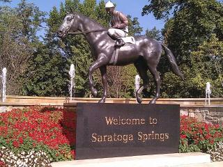 Saratoga Springs Beautiful Location - Saratoga Springs vacation rentals