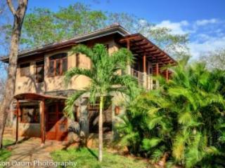 Luxury throughout at Playa Avellana - Image 1 - Playa Avellanas - rentals