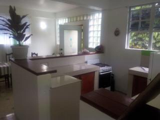 Anthurium Apartment - Roseau vacation rentals