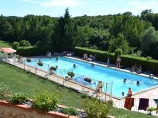 Nice Caravan/mobile home with Internet Access and Long Term Rentals Allowed (over 1 Month) - Castres vacation rentals