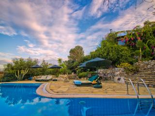 Villa Saranda Hillside Retreat with Stunning Views - Sogut vacation rentals
