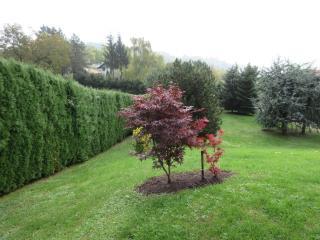 Country House Bellevue - Trstenik vacation rentals
