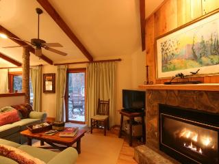 Nice 2 bedroom Boone House with Shared Outdoor Pool - Boone vacation rentals