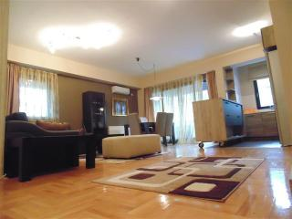 Nice 2 bedroom Apartment in Skopje - Skopje vacation rentals