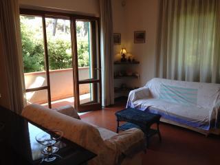apartment in nature park near the sea - Torre del Lago Puccini vacation rentals
