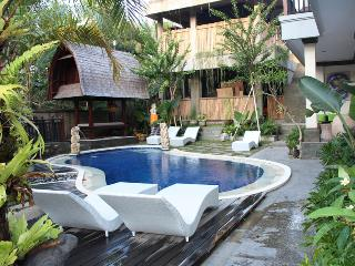 Nice Guest house with Internet Access and A/C - Ubud vacation rentals