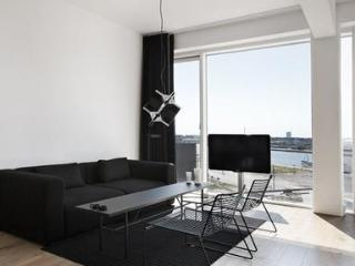 Manhattan style 2 bedrooms apartment with terrace. - 1889 - Copenhagen vacation rentals