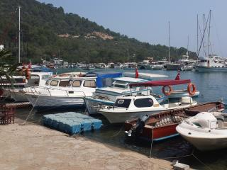 In Torba on the beach and brand new apart ID-357 - Torba vacation rentals