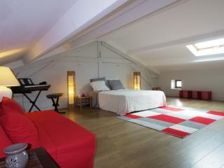 Charmante Triplex, 60 m2 mezzanine avec Jardin - Le Chateau d'Oleron vacation rentals