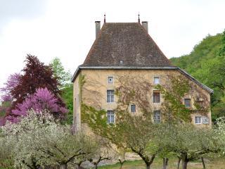 2 bedroom Gite with Television in La Balme-les-Grottes - La Balme-les-Grottes vacation rentals
