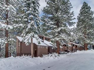 Free shuttle to skiing, golf, pool, Village, & more! - Northstar vacation rentals
