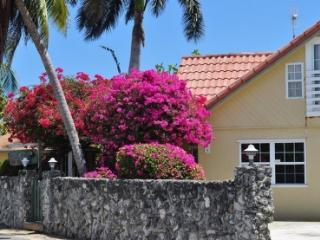 Private Villa Set Behind Coral Wall, Ocean Views - West Bay vacation rentals