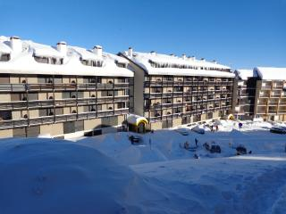 Modern studio in Saint-Lary-Soulan, with fireplace & Wi-Fi– 500m from the slopes! - Saint-Lary-Soulan vacation rentals