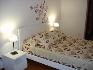 New apartment in the historic center of Porto - Porto vacation rentals