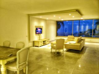 Suite Apartment-best location haifa - Haifa vacation rentals
