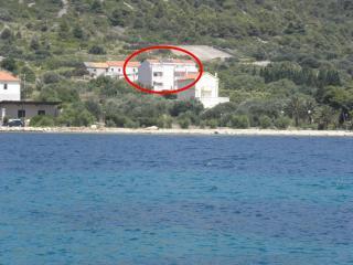 2667  A1(2+2) - Soline (Dugi otok) - Verunic vacation rentals