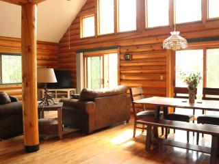 Perfect Cabin with Internet Access and Garage - Black Hawk vacation rentals