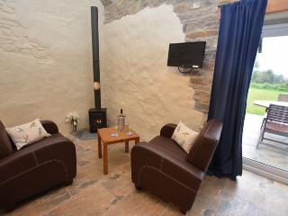 Perfect House with Internet Access and Fireplace - Talgarreg vacation rentals