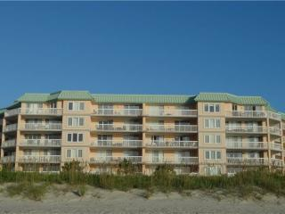 Gorgeous 3 bedroom House in Pawleys Island - Pawleys Island vacation rentals