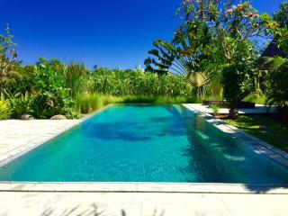 Unique Beach villa - 8 people - 80m from the beach - Kuta vacation rentals