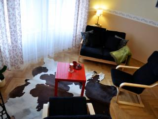 Spacious and bright 3-bedroom apartment - Prague vacation rentals