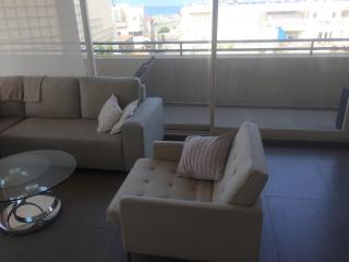 Sunny 2bd Penthouse sea side! - Tel Aviv vacation rentals