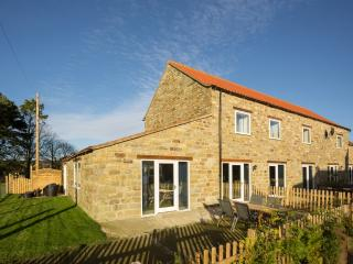 Cowslip Cottage located in Harwood Dale, North Yorkshire - Staintondale vacation rentals