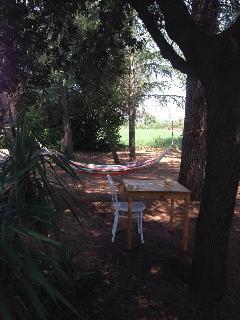 Bright 4 bedroom House in Castiglione in Teverina - Castiglione in Teverina vacation rentals