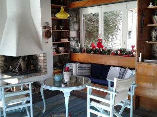 Seafront Villa , beach,dock, Feet in the water - Eretria vacation rentals