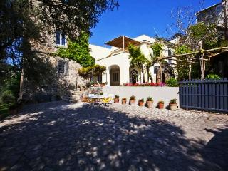 Panoramic villa with ancient tower - V733 - Sant'Agata sui Due Golfi vacation rentals