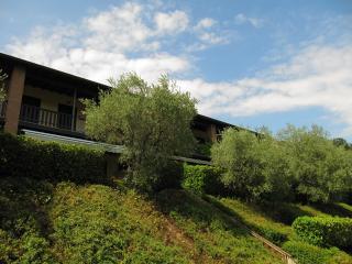 Hillside dream house- private garden & big pool - Soiano Del Lago vacation rentals