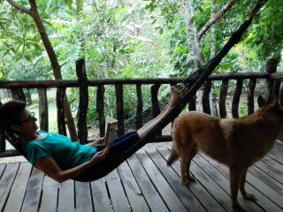 Near Monteverde La Granja - Riverside Farmhouse - Monteverde vacation rentals