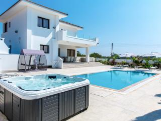 Newly built modern luxury villa, pool, jacuzzi,gym - Protaras vacation rentals