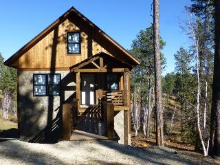 Gold Camp Lodge - new listing! - Lead vacation rentals