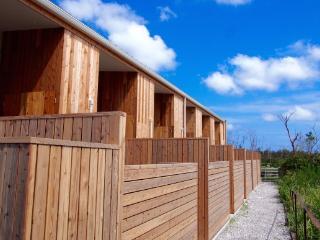 TURTLE SHORE BEACH HOUSE - Ichinomiya-machi vacation rentals