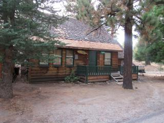 Historic Little Bear - Big Bear City vacation rentals