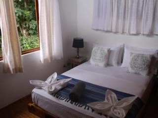 Spacious open plan tropical house - Santa Teresa vacation rentals