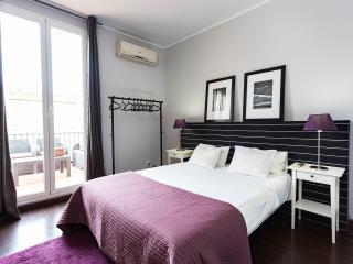 TheVintageRentlas  Grand Terrace 2 bedroom cv3 - Barcelona vacation rentals