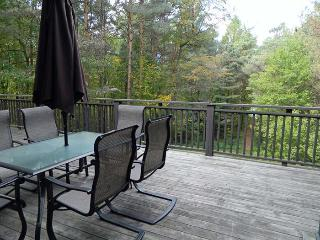 Two Fifty Eight - East Lake #6 - The Great Waterway vacation rentals