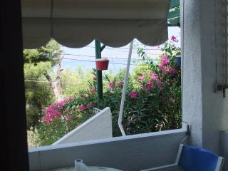 Family 2 bedroom apt with side sea & garden view - Kalymnos vacation rentals