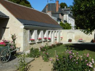 Nice Gite with Internet Access and Television - Lussault-sur-Loire vacation rentals