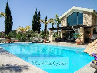 Private paradise! 4BR luxury villa, pool, gardens - Protaras vacation rentals