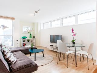 Lovely Bright and Airy 1 Bed Apartment with Views - London vacation rentals