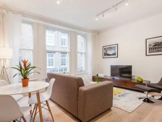 Beautiful Large Designer Apartment-Soho Piccadilly - London vacation rentals