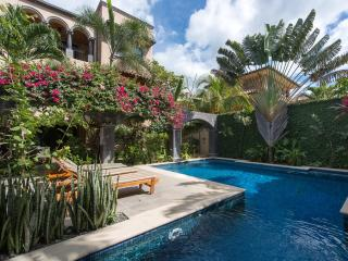 Gorgeous Condo with Internet Access and A/C - Tamarindo vacation rentals