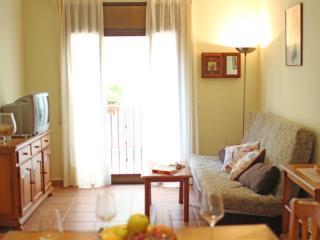 Beautiful apartment near the beach - Lloret de Mar vacation rentals