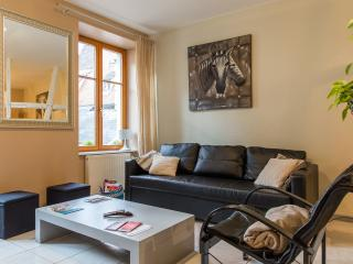 GITE HYPER CENTRE  105 M2 8 COUCHAGES GARAGE - Colmar vacation rentals